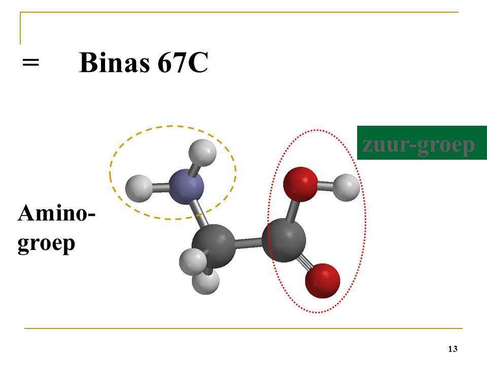 13 = Binas 67C Amino- groep zuur-groep