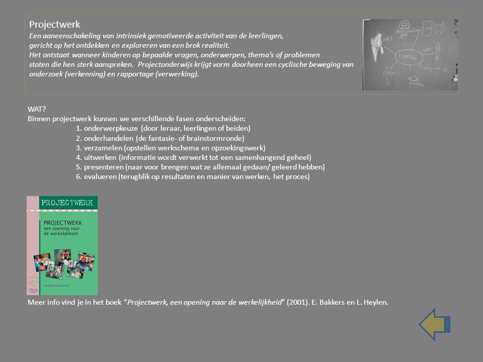 Projectwerk Een aaneenschakeling van intrinsiek gemotiveerde activiteit van de leerlingen, gericht op het ontdekken en exploreren van een brok realiteit.