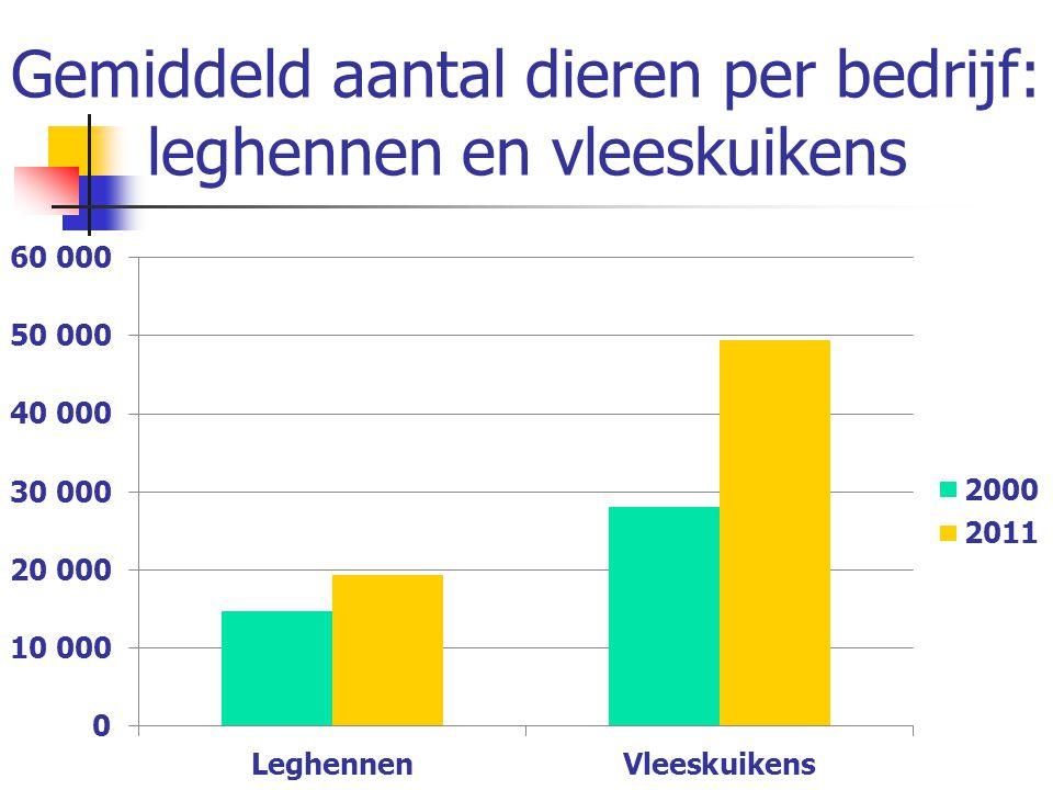 Gemiddeld aantal dieren per bedrijf: leghennen en vleeskuikens