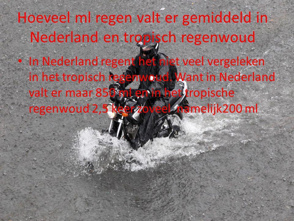Hoeveel ml regen valt er gemiddeld in Nederland en tropisch regenwoud In Nederland regent het niet veel vergeleken in het tropisch regenwoud. Want in