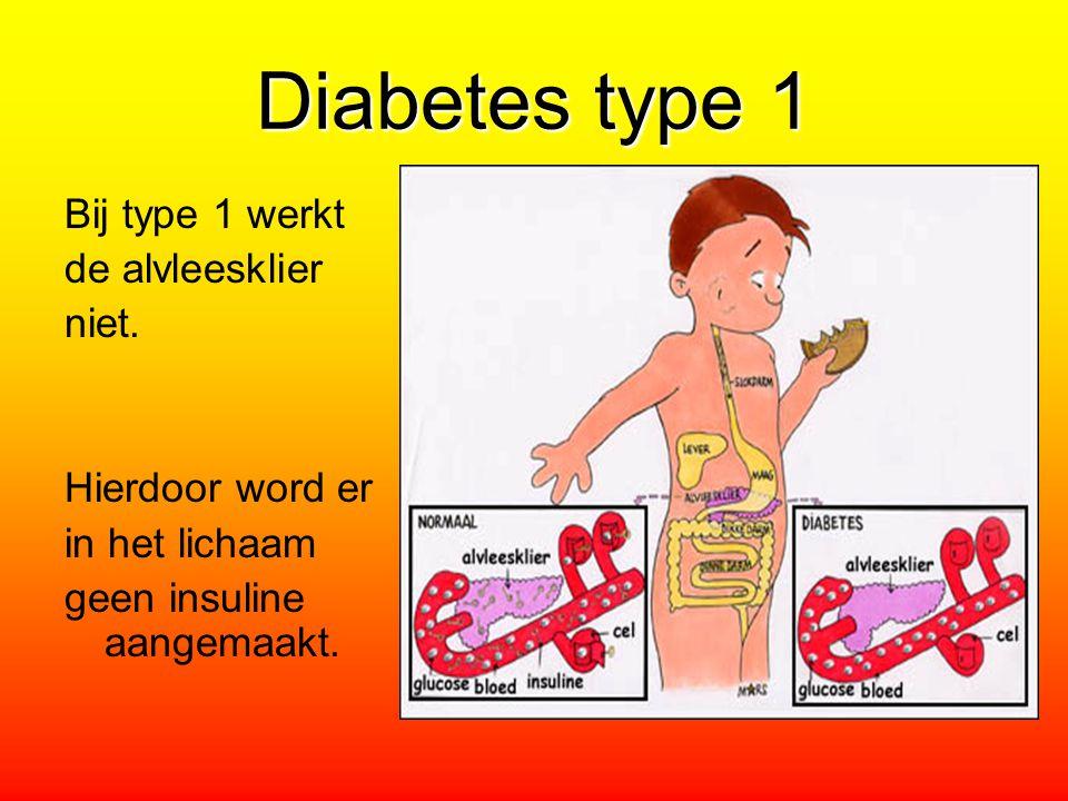 Diabetes type 1 Bij type 1 werkt de alvleesklier niet. Hierdoor word er in het lichaam geen insuline aangemaakt.