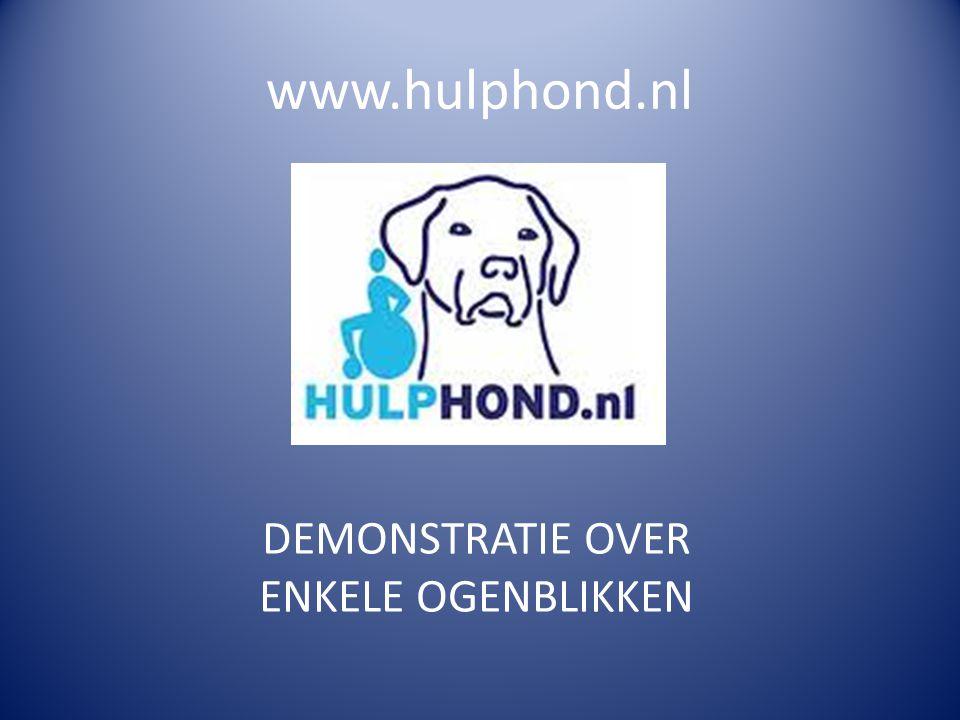 www.hulphond.nl DEMONSTRATIE OVER ENKELE OGENBLIKKEN