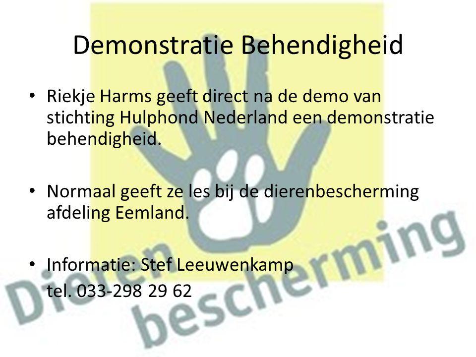 Demonstratie Behendigheid Riekje Harms geeft direct na de demo van stichting Hulphond Nederland een demonstratie behendigheid. Normaal geeft ze les bi
