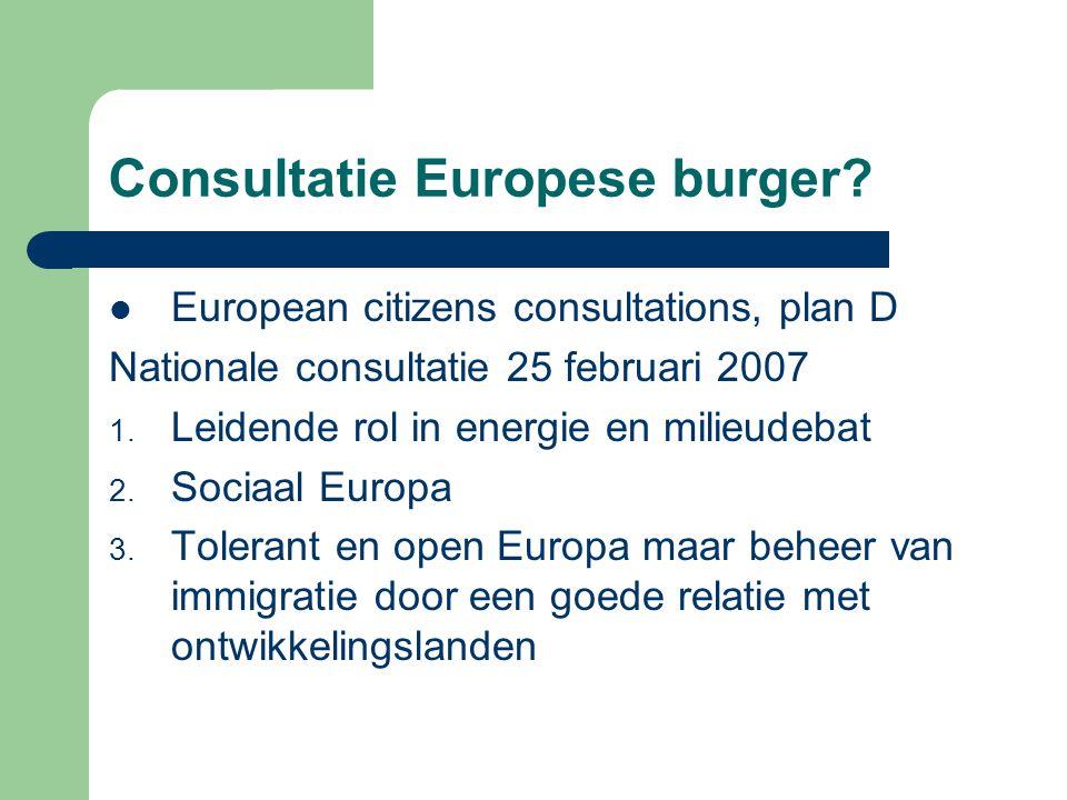 Consultatie Europese burger.