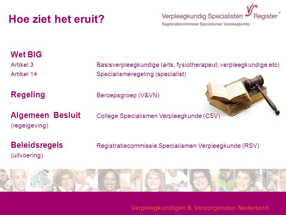 Verpleegkundigen & Verzorgenden Nederland Hoe ziet het eruit? Wet BIG Artikel 3Basisverpleegkundige (arts, fysiotherapeut, verpleegkundige etc) Artike