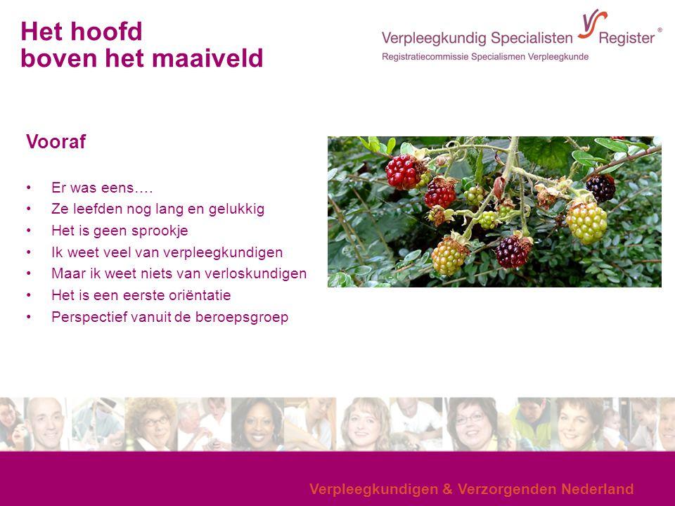 Verpleegkundigen & Verzorgenden Nederland Vooraf Er was eens…. Ze leefden nog lang en gelukkig Het is geen sprookje Ik weet veel van verpleegkundigen