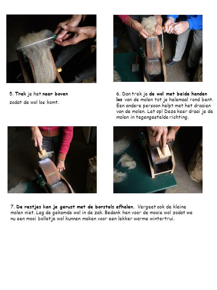 7. De restjes kan je gerust met de borstels afhalen. Vergeet ook de kleine molen niet. Leg de gekamde wol in de zak. Bedank hen voor de mooie wol zoda
