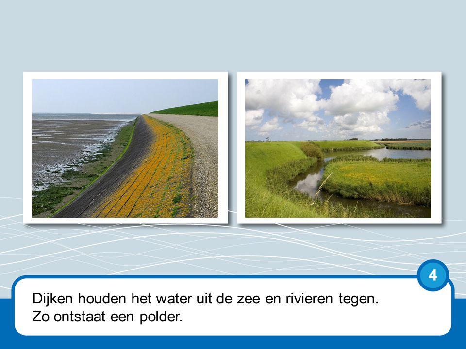 Dijken houden het water uit de zee en rivieren tegen. Zo ontstaat een polder. 4