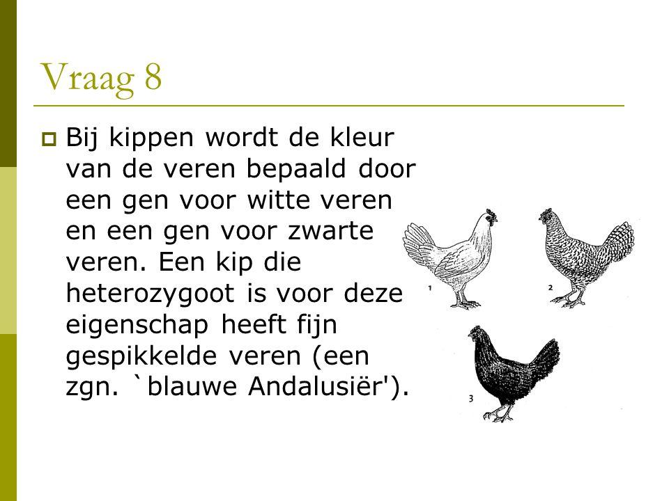 Vraag 8  Bij kippen wordt de kleur van de veren bepaald door een gen voor witte veren en een gen voor zwarte veren. Een kip die heterozygoot is voor
