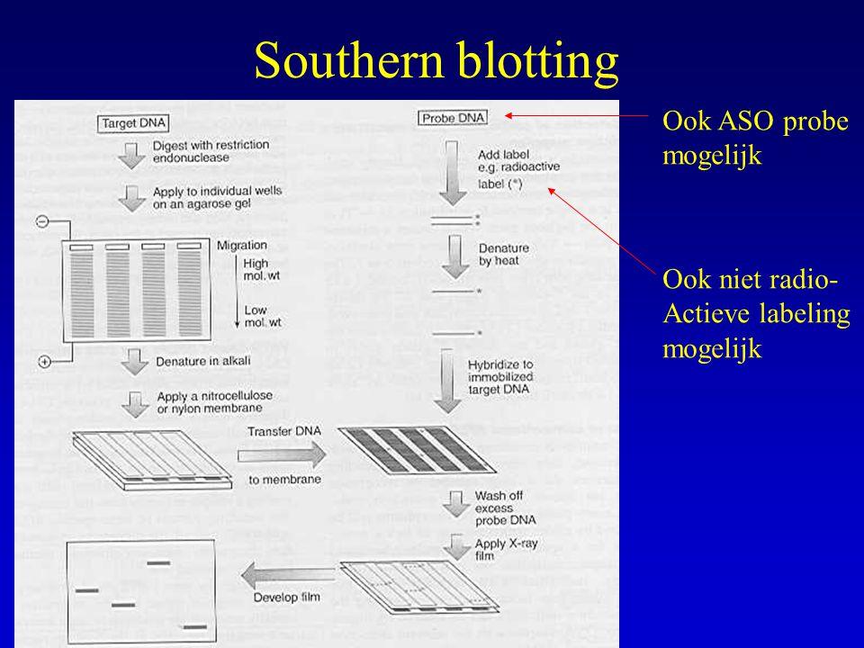 Southern blotting Ook ASO probe mogelijk Ook niet radio- Actieve labeling mogelijk