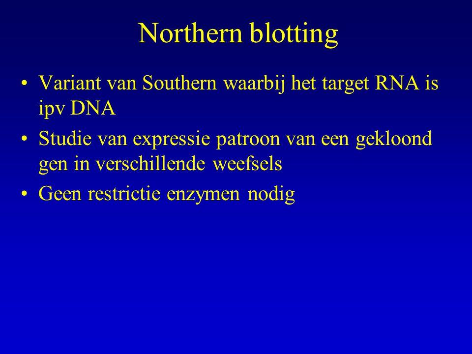 Northern blotting Variant van Southern waarbij het target RNA is ipv DNA Studie van expressie patroon van een gekloond gen in verschillende weefsels G