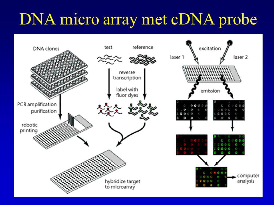 Allel specifieke oligonucleotide hybridizatie ASO Dot-blotting, target DNA op membraan (nylon, nitrocellulose) aanbrengen en binden Denatureren en gelabelde probe hybridiseren, wassen en detectie (radio-actief of niet radioactieve technieken (zie vroeger)) Kan gebruikt worden voor detectie van puntmutaties ASO-probe 15-20 nucleotiden, verschil centraal in probe Ook reverse dot-blot met ASO, ongelabelde probe gebonden op membraan, hybridiseren met gelabeld target (analoog aan LiPA en AMPLICOR)