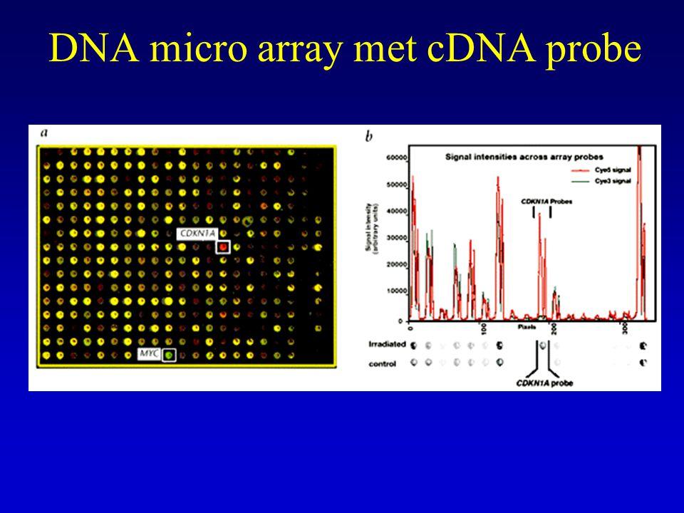 DNA micro arrays Oligonucleotide arrays –Probes 20-25 basen, kunnen rechtstreeks op chip (glas slide) gesynthetiseerd worden –Fotolithografie en oligonucleotide synthese