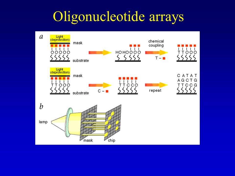 –Probes 20-25 basen, kunnen rechtstreeks op chip (glas slide) gesynthetiseerd worden –Fotolithografie en oligonucleotide synthese –Nadeel: moet door firma aangemaakt worden (custom synthese) Affymetrix –Voordeel: polyvalenter, specifieker door meerdere kortere probes per gen, mismatch controles –Zie artikel