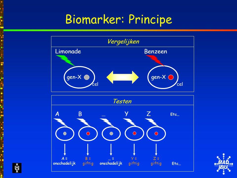 IBU Biomarker: Principe Vergelijken Etc… Testen gen-X Limonade cel gen-X Benzeen cel B = giftig B A = onschadelijk AY Y = giftig Z Z = giftig … … = onschadelijk
