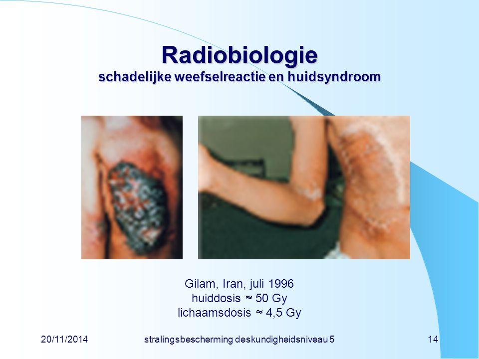 Radiobiologie schadelijke weefselreactie en huidsyndroom Gilam, Iran, juli 1996 huiddosis  50 Gy lichaamsdosis  4,5 Gy 20/11/2014stralingsbescherming deskundigheidsniveau 514