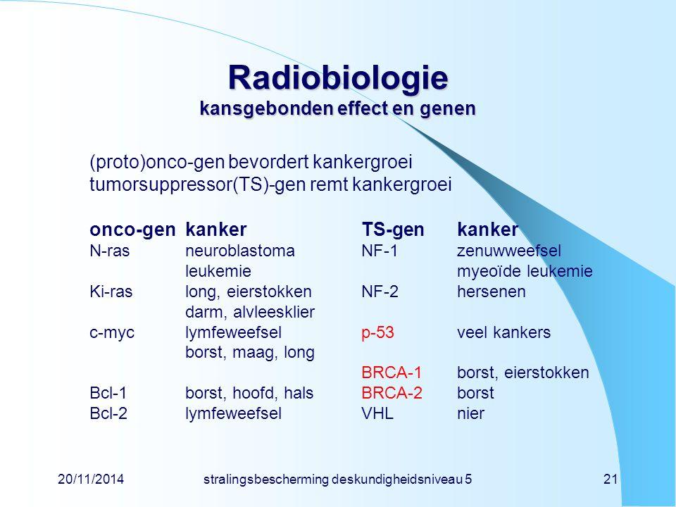 20/11/2014stralingsbescherming deskundigheidsniveau 521 Radiobiologie kansgebonden effect en genen (proto)onco-gen bevordert kankergroei tumorsuppressor(TS)-gen remt kankergroei onco-genkankerTS-genkanker N-rasneuroblastomaNF-1zenuwweefsel leukemiemyeoïde leukemie Ki-raslong, eierstokkenNF-2hersenen darm, alvleesklier c-myclymfeweefselp-53veel kankers borst, maag, long BRCA-1borst, eierstokken Bcl-1borst, hoofd, hals BRCA-2borst Bcl-2lymfeweefselVHLnier