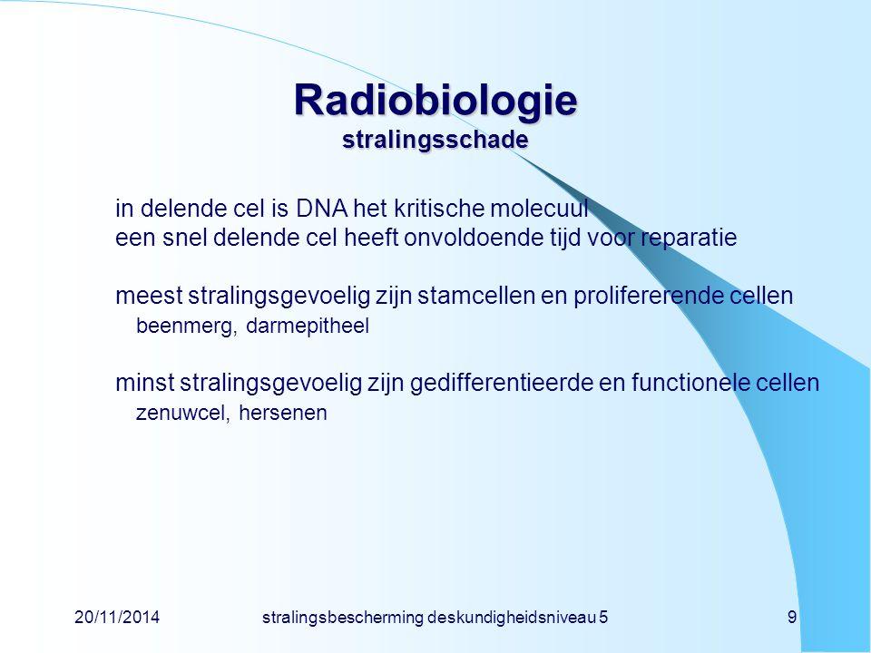 20/11/2014stralingsbescherming deskundigheidsniveau 510 Radiobiologie stralingsschade tijdschaalproces 10 -18 - 10 -17 sabsorptie van stralingsenergie 10 -16 svorming van radicalen door radiolyse 10 -12 - 10 -7 sreactie van radicaal met biomolecuul seconden - minutenbiochemische verandering (enzymen) minuten - urenreparatie van schade  hersensyndroom dagenceldood  darmsyndroom dagen - wekenmeer acute effecten  beenmergsyndroom, huidsyndroom maanden - jarenlate effecten, kanker generatiesgenetische schade bij nakomelingen