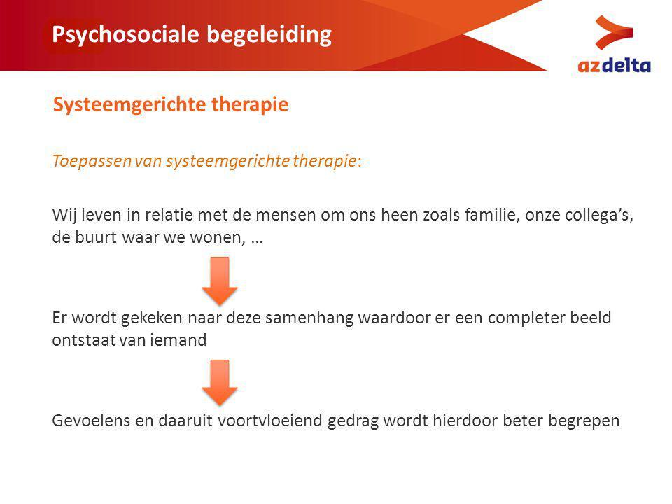 Naast systeemgerichte therapie hebben we aandacht voor: Partner Kinderen Ouders Familieleden Vrienden, …