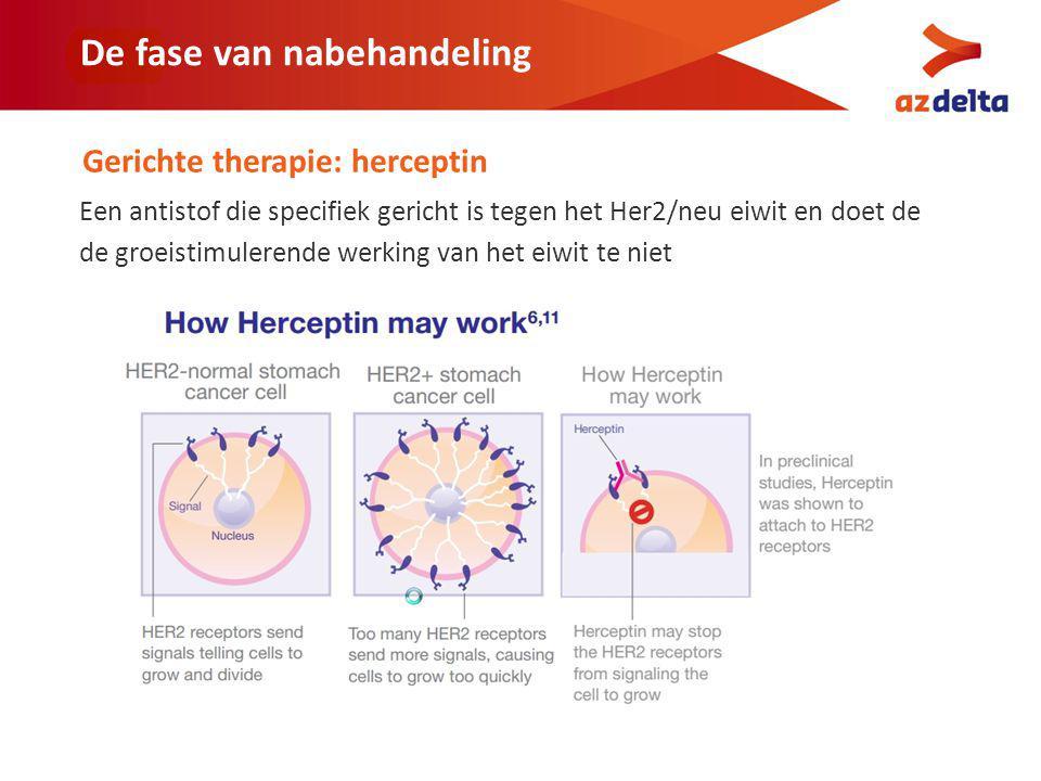 De fase van nabehandeling Gerichte therapie: herceptin Een antistof die specifiek gericht is tegen het Her2/neu eiwit en doet de de groeistimulerende werking van het eiwit te niet