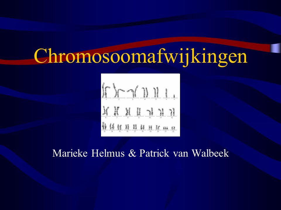 Mitotische trisomie mozaïcisme Mitotische non-disjunction Een normale bevruchte eicel met 46 chromosomen geeft een andere cellijn af met een extra chromosoom.