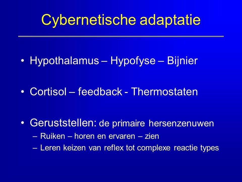 Cybernetische adaptatie Hypothalamus – Hypofyse – Bijnier Cortisol – feedback - Thermostaten Geruststellen: de primaire hersenzenuwen –Ruiken – horen