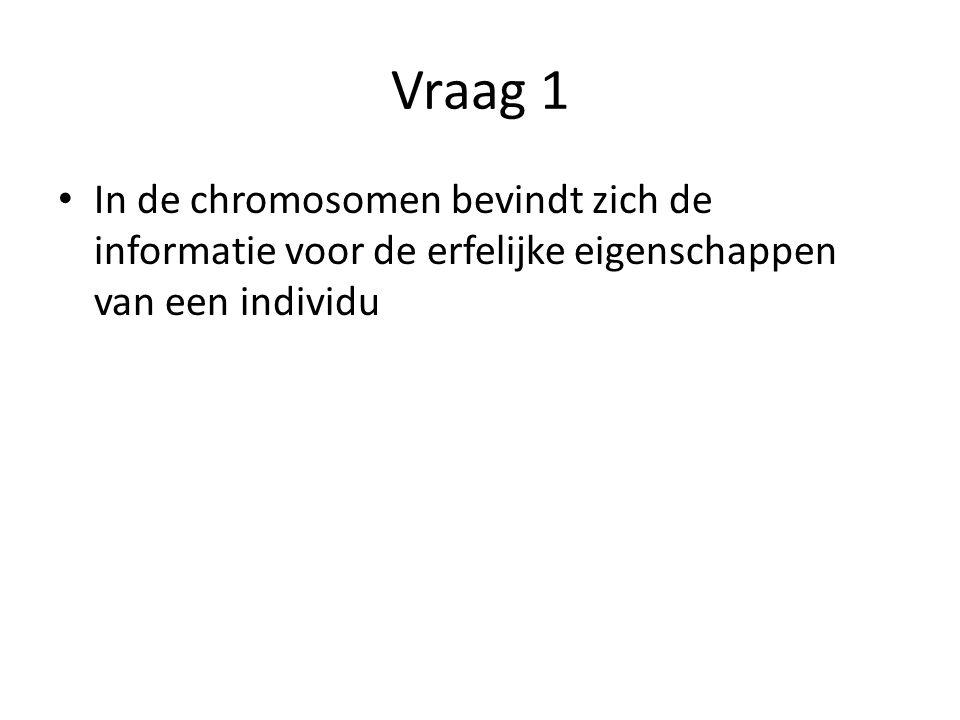 Vraag 1 In de chromosomen bevindt zich de informatie voor de erfelijke eigenschappen van een individu