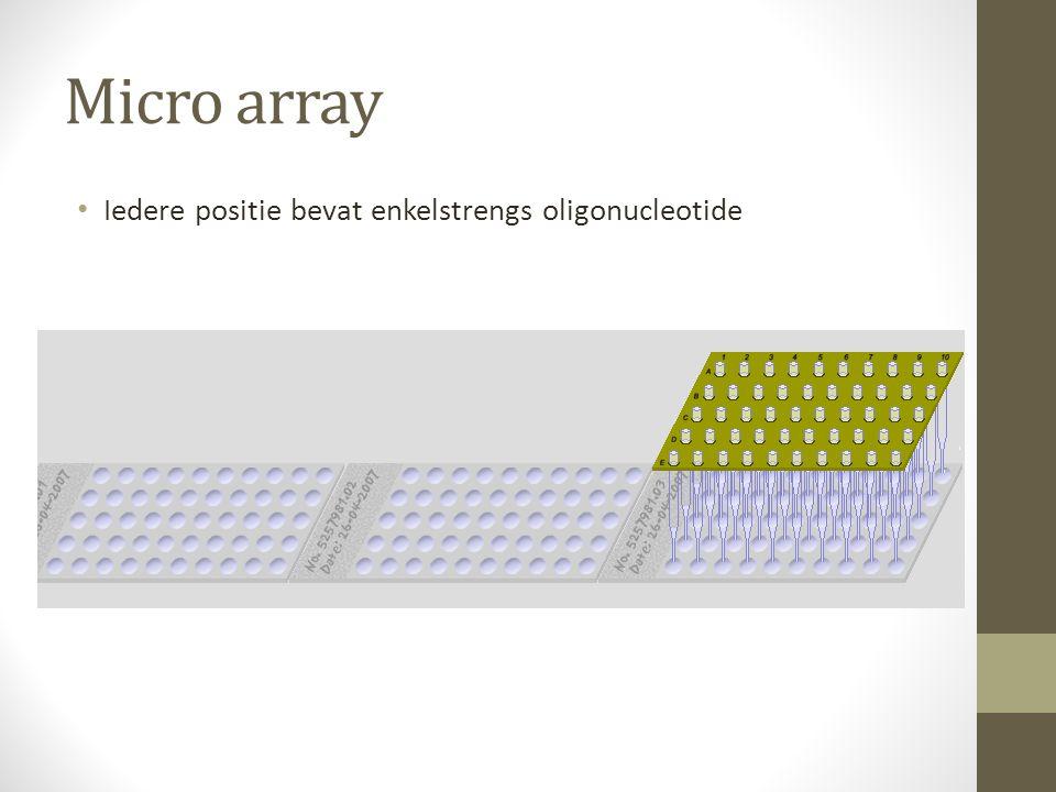 Micro array Iedere positie bevat enkelstrengs oligonucleotide