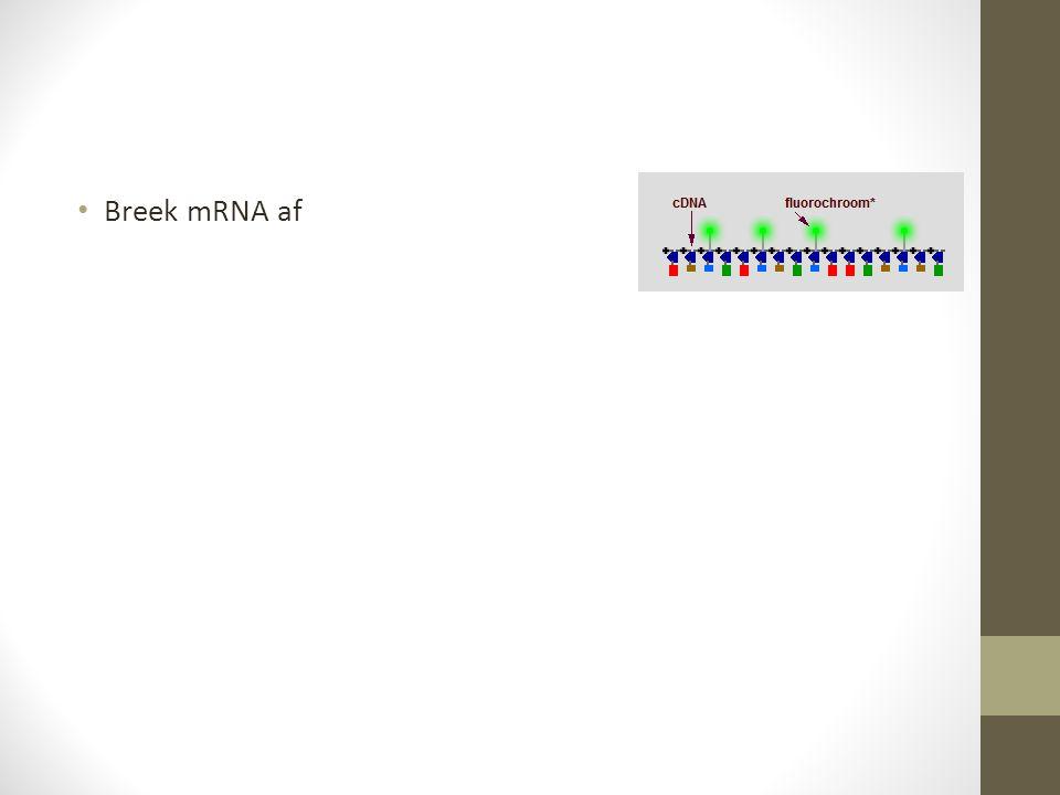 Breek mRNA af