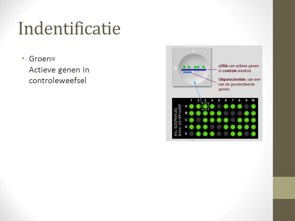 Indentificatie Groen= Actieve genen in controleweefsel