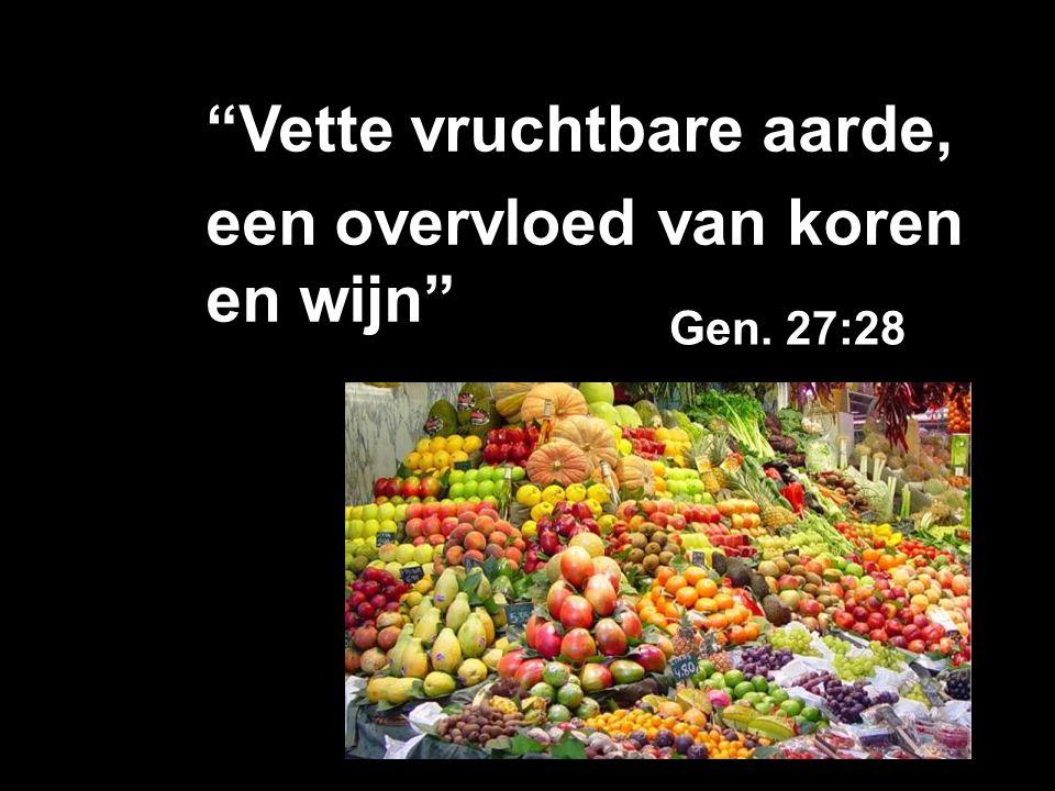 """""""Vette vruchtbare aarde, een overvloed van koren en wijn"""" Gen. 27:28"""