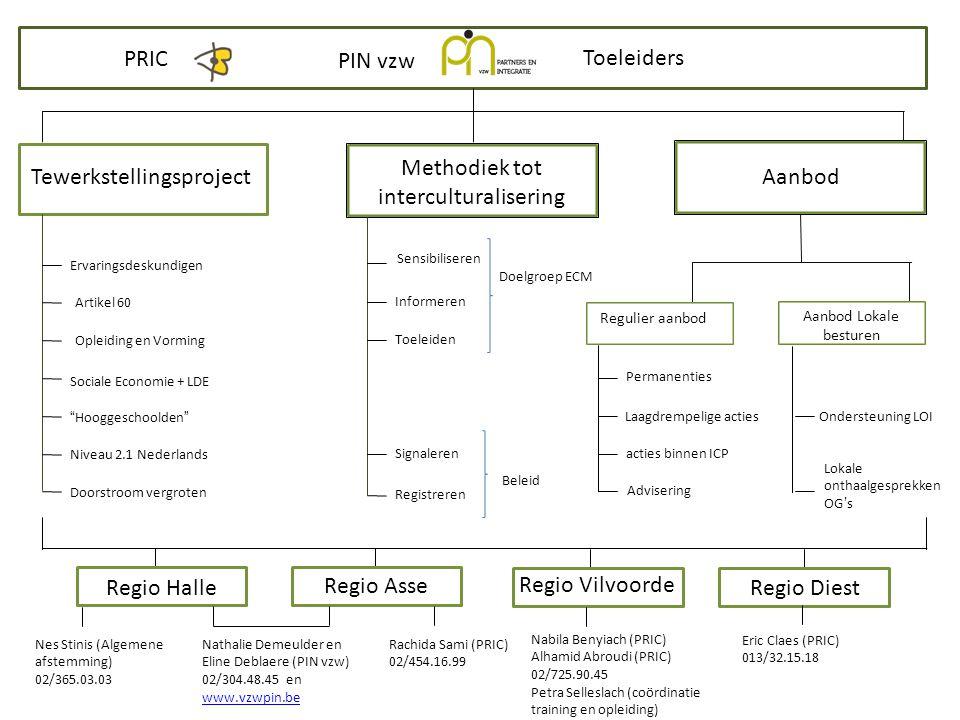 Toeleiders PRIC PIN vzw t Tewerkstellingsproject Methodiek tot interculturalisering Aanbod Regulier aanbod Aanbod Lokale besturen Ervaringsdeskundigen