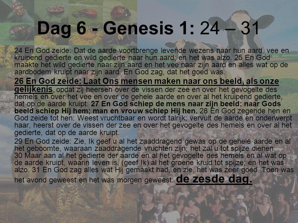 Dag 6 - Genesis 1: 24 – 31 24 En God zeide: Dat de aarde voortbrenge levende wezens naar hun aard, vee en kruipend gedierte en wild gedierte naar hun aard; en het was alzo.