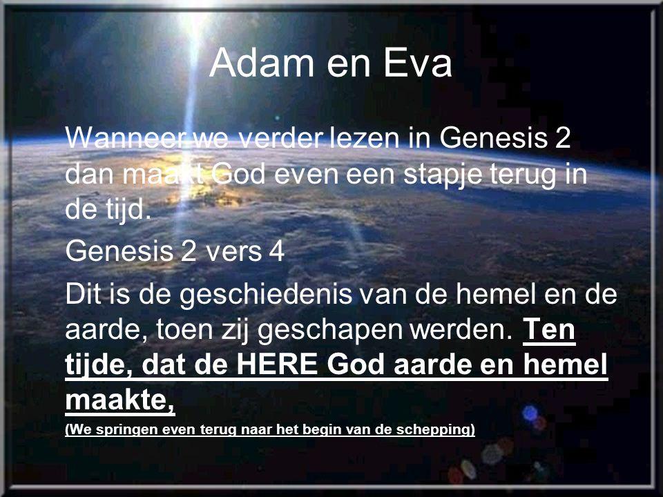 Adam en Eva Wanneer we verder lezen in Genesis 2 dan maakt God even een stapje terug in de tijd.