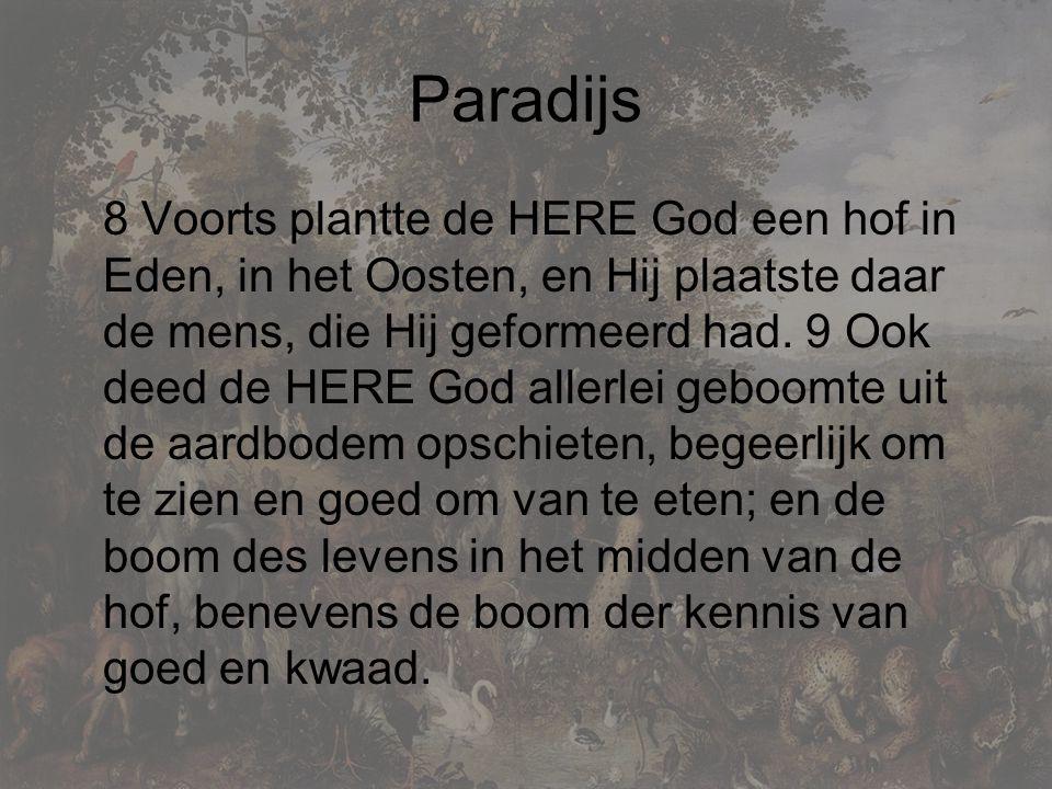Paradijs 8 Voorts plantte de HERE God een hof in Eden, in het Oosten, en Hij plaatste daar de mens, die Hij geformeerd had.