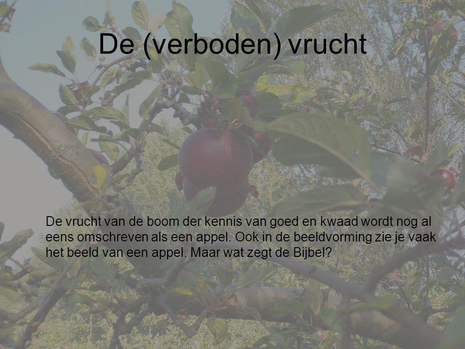 De (verboden) vrucht De vrucht van de boom der kennis van goed en kwaad wordt nog al eens omschreven als een appel.