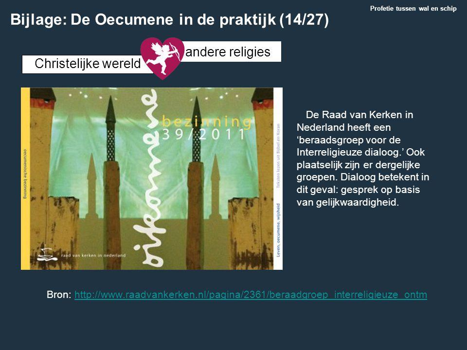 De Raad van Kerken in Nederland heeft een 'beraadsgroep voor de Interreligieuze dialoog.' Ook plaatselijk zijn er dergelijke groepen. Dialoog betekent