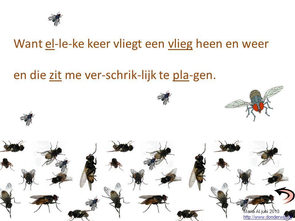 Want el-le-ke keer vliegt een vlieg heen en weer en die zit me ver-schrik-lijk te pla-gen. Maria Al juni 2013 http://www.donderwijs.nl