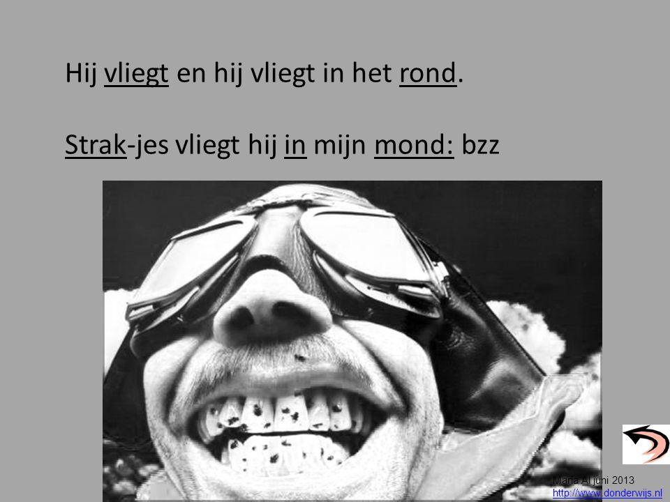 Hij vliegt en hij vliegt in het rond. Strak-jes vliegt hij in mijn mond: bzz Maria Al juni 2013 http://www.donderwijs.nl