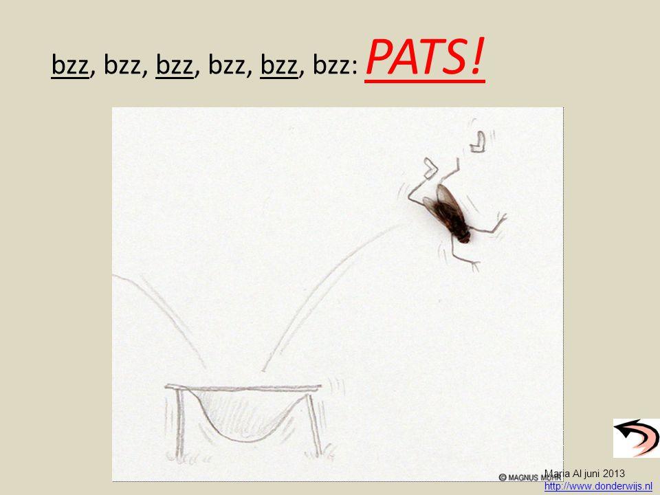 bzz, bzz, bzz, bzz, bzz, bzz: PATS! Maria Al juni 2013 http://www.donderwijs.nl