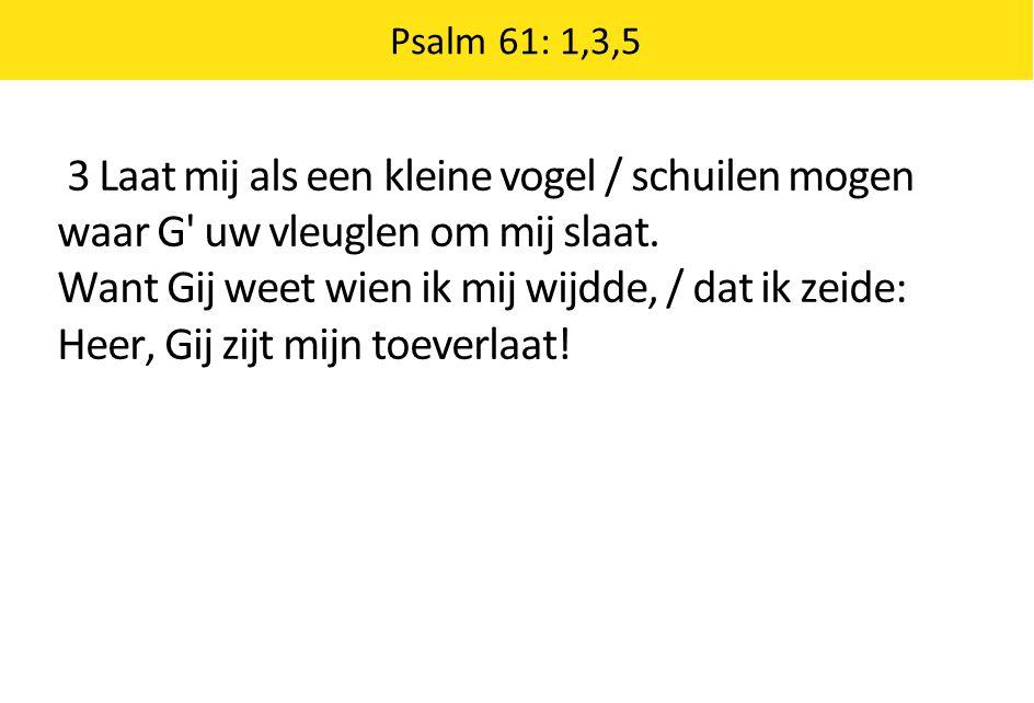 Psalm 61: 1,3,5 3 Laat mij als een kleine vogel / schuilen mogen waar G' uw vleuglen om mij slaat. Want Gij weet wien ik mij wijdde, / dat ik zeide: H