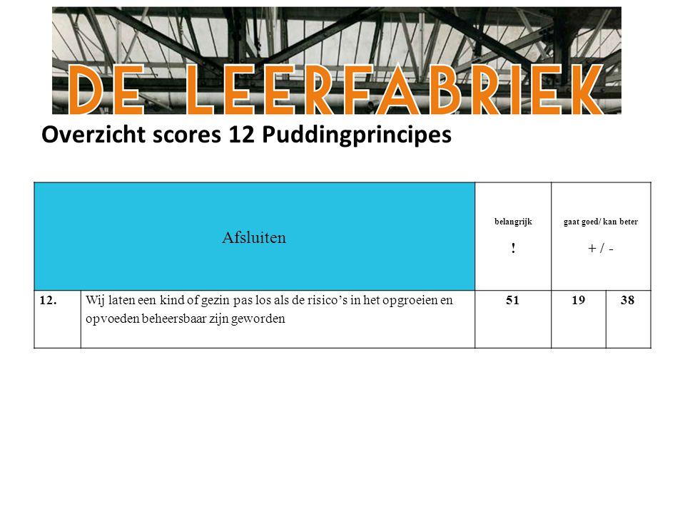 Overzicht scores 12 Puddingprincipes Afsluiten belangrijk .