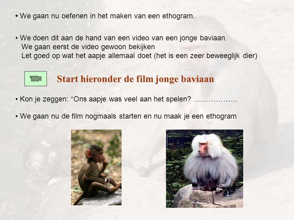 """We gaan nu oefenen in het maken van een ethogram. Start hieronder de film jonge baviaan Kon je zeggen: """"Ons aapje was veel aan het spelen? ……………… We d"""