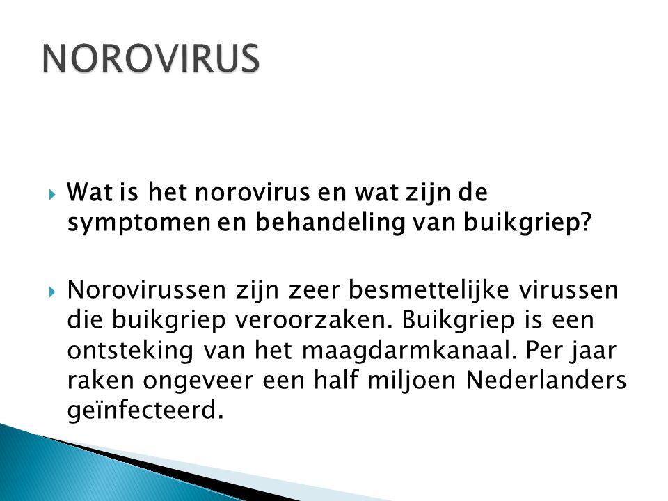  Wat is het norovirus en wat zijn de symptomen en behandeling van buikgriep.