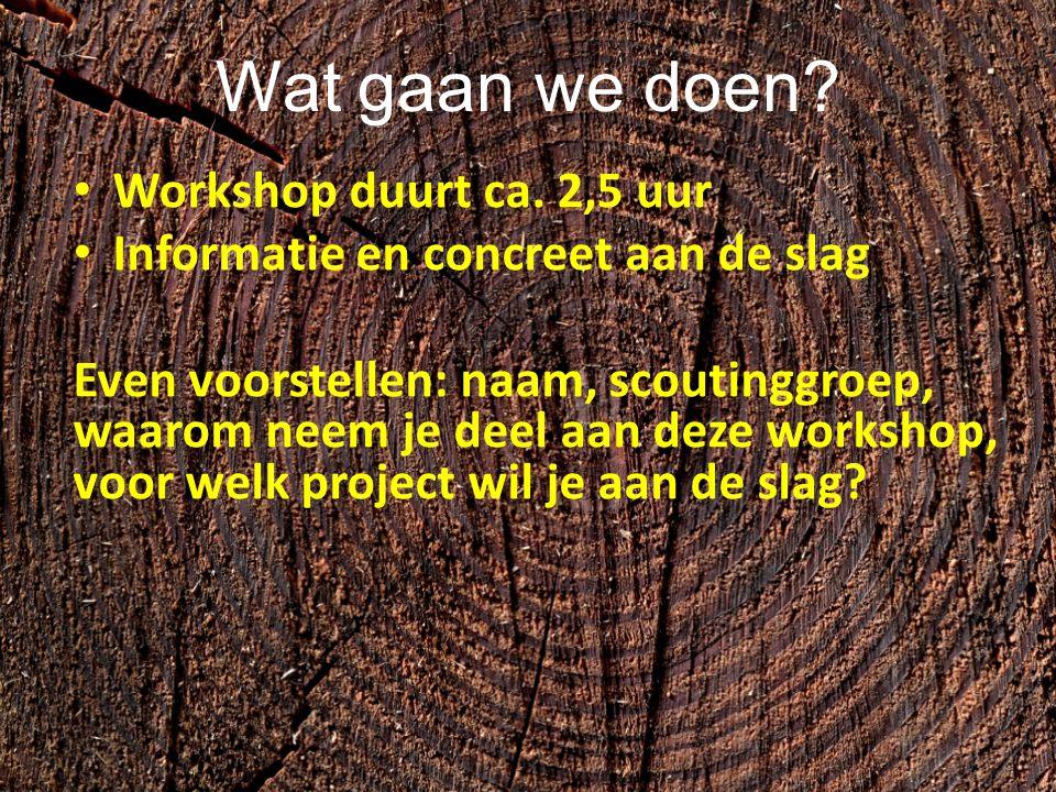 Wat gaan we doen? Workshop duurt ca. 2,5 uur Informatie en concreet aan de slag Even voorstellen: naam, scoutinggroep, waarom neem je deel aan deze wo
