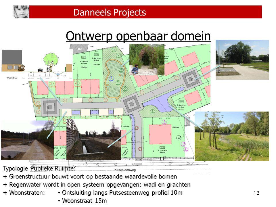 13 Danneels Projects Ontwerp openbaar domein Typologie Publieke Ruimte: + Groenstructuur bouwt voort op bestaande waardevolle bomen + Regenwater wordt