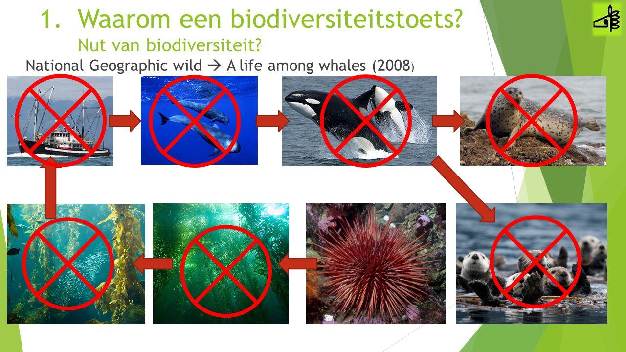 1.Waarom een biodiversiteitstoets? Nut van biodiversiteit? National Geographic wild  A life among whales (2008 )
