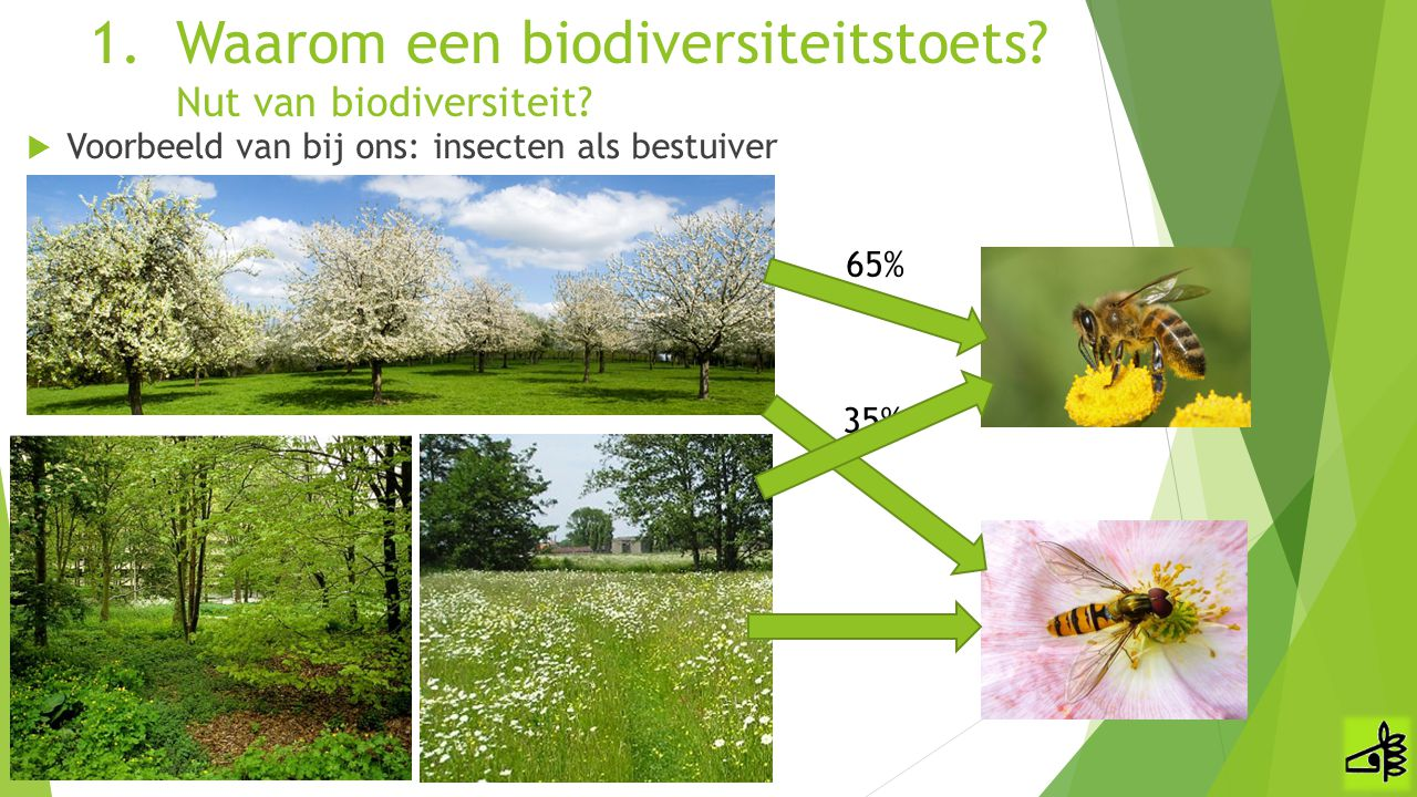  Voorbeeld van bij ons: insecten als bestuiver 1.Waarom een biodiversiteitstoets? Nut van biodiversiteit? 65% 35%