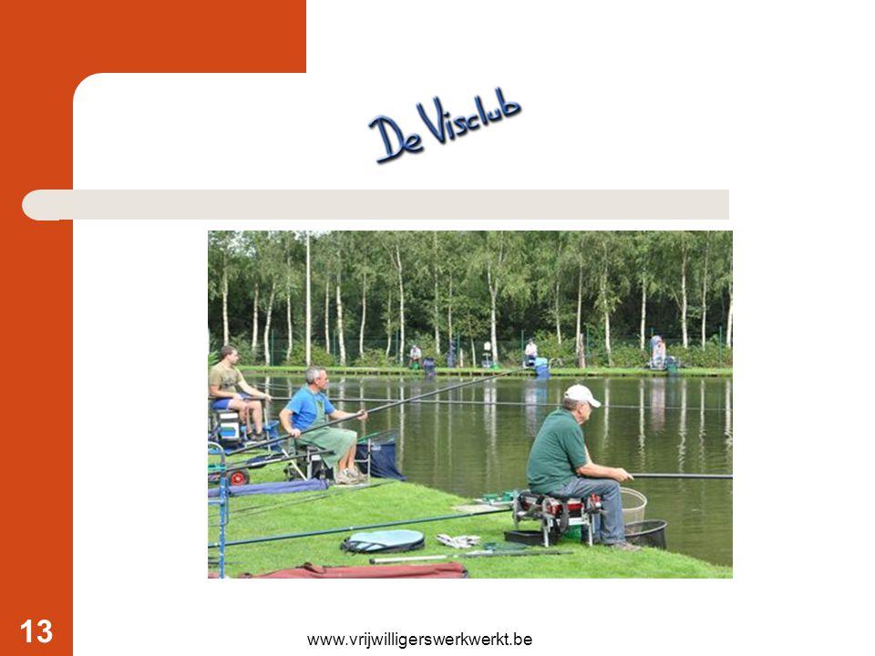 www.vrijwilligerswerkwerkt.be 13