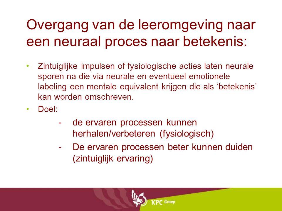 Overgang van de leeromgeving naar een neuraal proces naar betekenis: Zintuiglijke impulsen of fysiologische acties laten neurale sporen na die via neurale en eventueel emotionele labeling een mentale equivalent krijgen die als 'betekenis' kan worden omschreven.